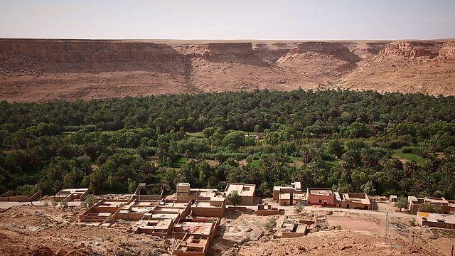 A preservação dos oásis marroquinos