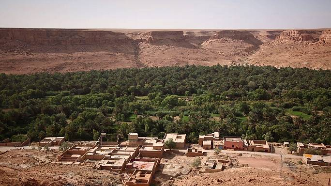 Les oasis du Maroc, des sources de vie à préserver