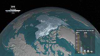 Watch: How ice has melted in the Arctic Ocean since 1984