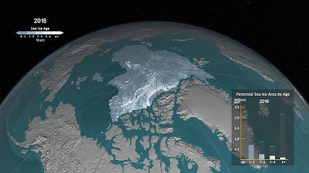NASA-Animation macht Schrumpfung der Arktis über drei Jahrzehnte sichtbar