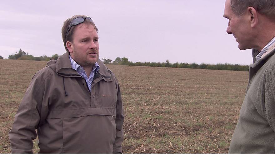 UK farmers adapt to climate change