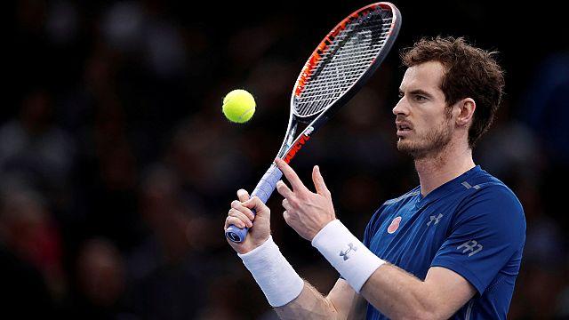 Murray reaches summit of world rankings following stunning season-long battle with Djokovic