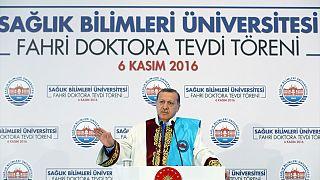 """Эрдогану критика со стороны Запада """"в одно ухо влетает, из другого вылетает"""""""