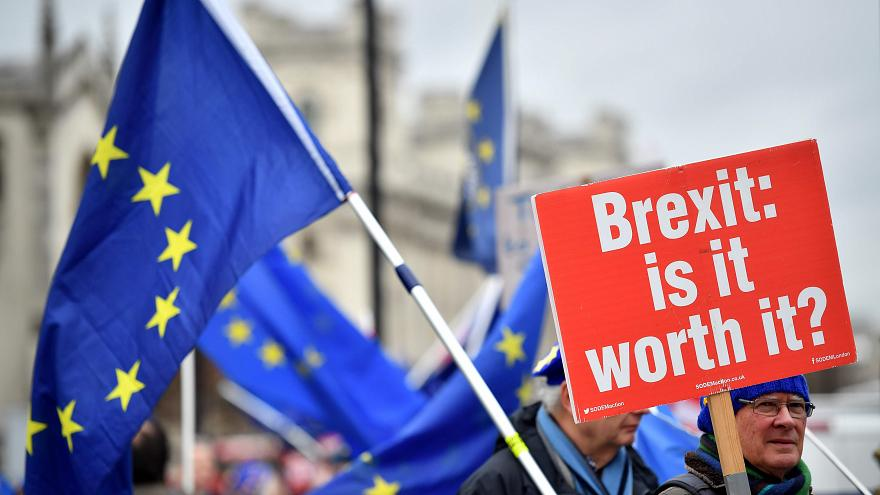 Image: A pro-E.U. demonstrator near the Houses of Parliament in London