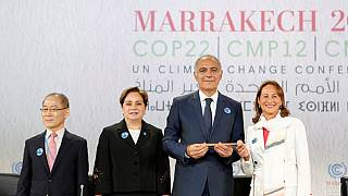 COP22: The question of application of the Paris agreement