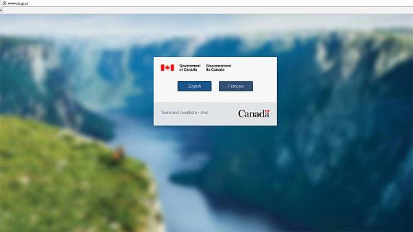 Did Trump crash a Canadian immigration website?
