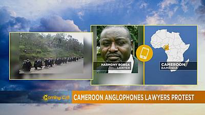 Cameroun : grève des avocats anglophones [The Morning Call]