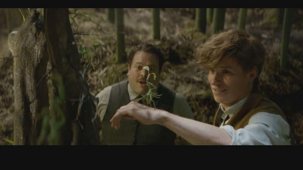 """""""Monstros Fantásticos"""" com argumento de J.K. Rowling estreia a 17 de novembro"""