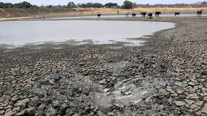 UN-Experten erwarten 2016 neuen Wärmerekord