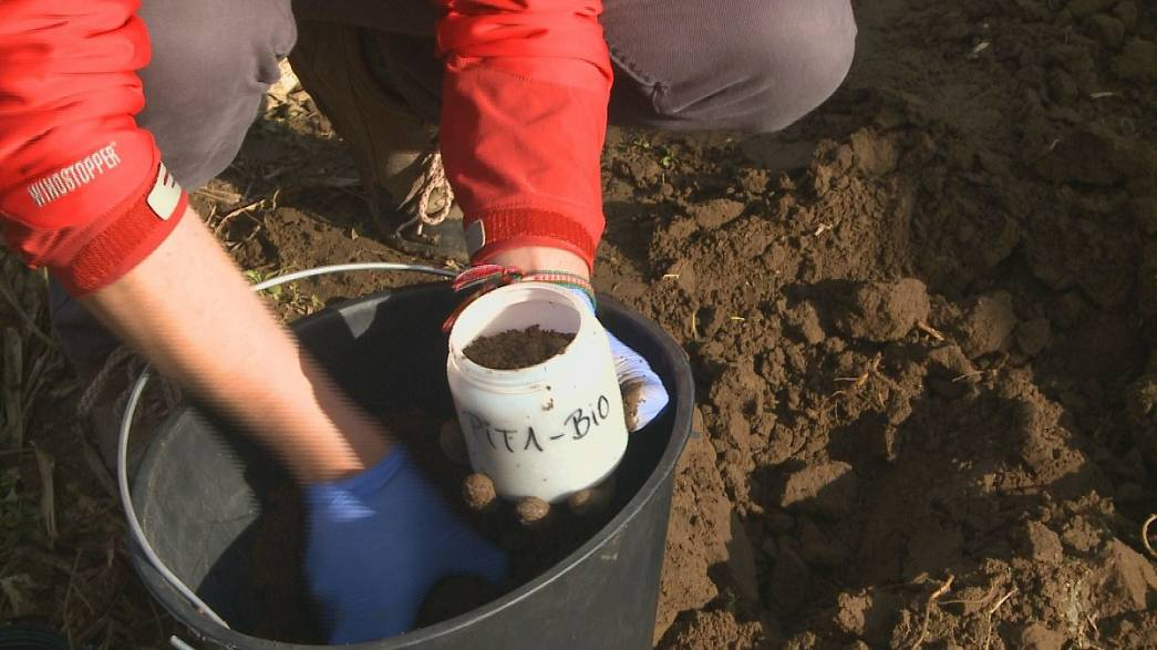 Digging deep to help Europe's soil
