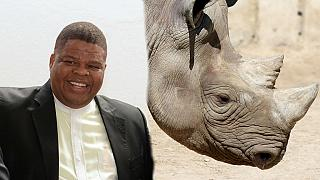 Afrique du Sud : un ministre soupçonné de braconnage dans le viseur du gouvernement