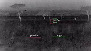 Kenya : 28 braconniers arrêtés grâce à des caméras thermiques(WWF)