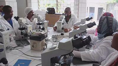 Comores : vers l'éradication de l'épidémie de paludisme