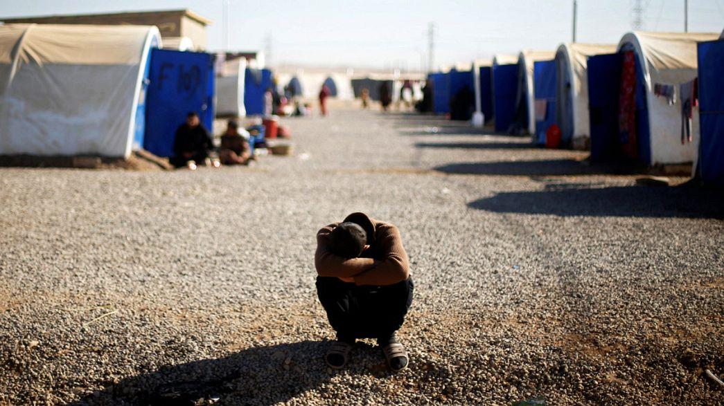 Iraque: Milhares de civis fogem dos combates na região de Mossul