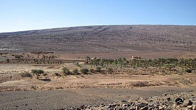 Accroitre le développement agricole au Maroc