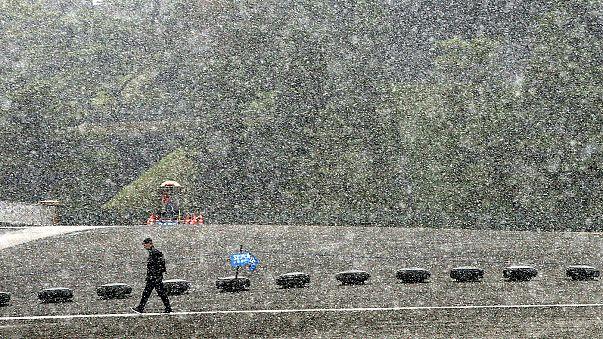 54 év után újra novemberi hó hullott Tokióra