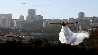 Israel's wildfires spread as homes and woods in Haifa are burnt down