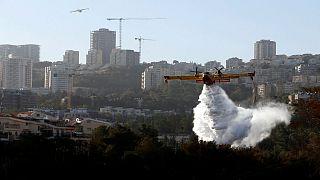 Incêndios em Israel ameaçam casas e bosques em Haifa