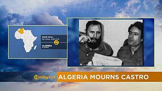 L'Afrique rend hommage à Castro