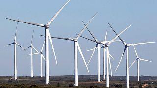 Los ecologistas, descontentos con el nuevo paquete energético de la Comisión