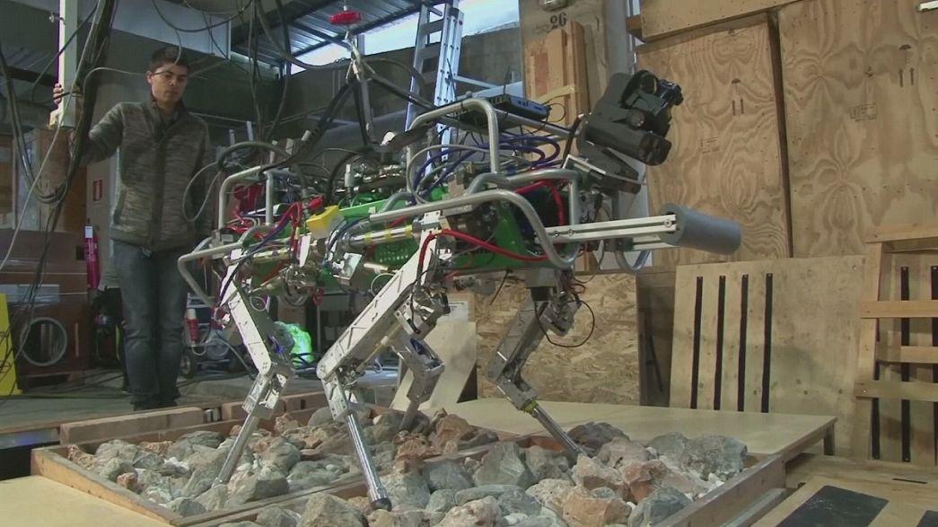 HyQ, az olasz robot mentőkutya