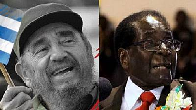 'Mugabe must learn from Castro and pass on the baton'
