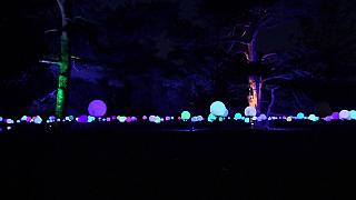 Los Kew Gardens de Londres se visten de gala para celebrar la Navidad
