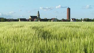 Ungersheim - an Alsace village in transition and on the silver screen