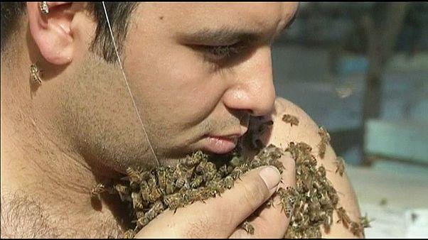 Αίγυπτος: Μια γενειάδα από... μέλισσες