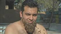 "Egyptian man grows ""beard of bees''"