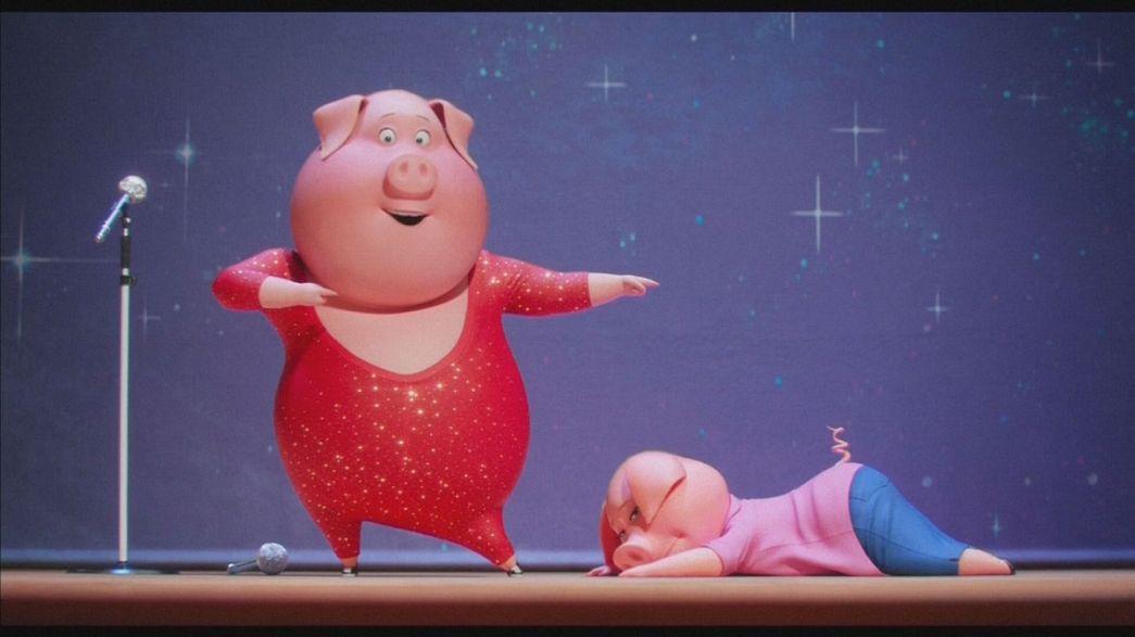 """""""Tous en scène"""" : cochons, porc-épics et gorilles s'inscrivent à """"The Voice..."""""""