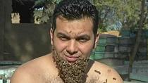 "Egyptian beekeeper grows a ""beard of bees"" [no comment]"