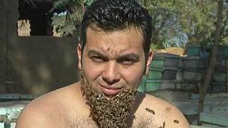 Un apiculteur égyptien se fait pousser une barbe d'abeilles [no comment]