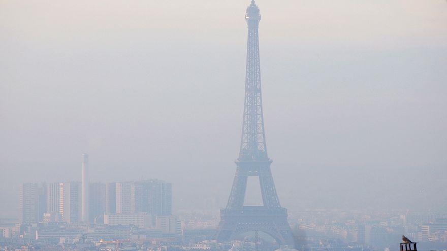 Paris wages war on exploding rat population