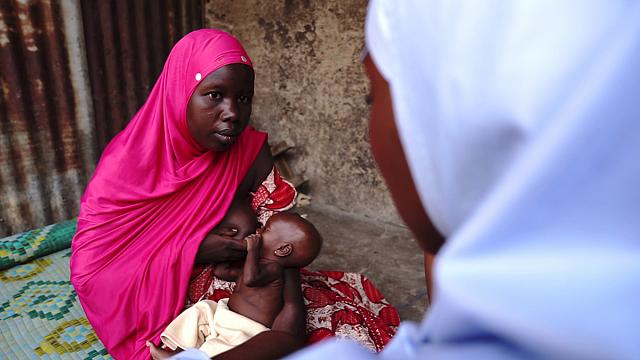 North-east Nigeria: experts and volunteers working together against famine