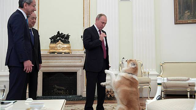 Putin's barking dog take centre stage at media interview