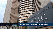 CFA Franc review  and spotlight on Nigerien agro-entrepreneur [Business Africa]