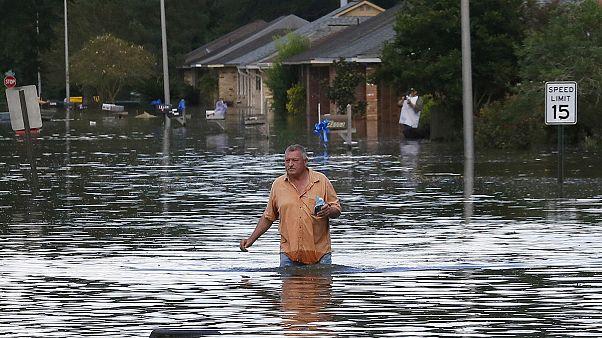 بدون شرح، مروری بر سال ۲۰۱۶: سیل و طوفان