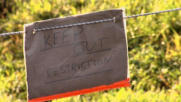 Vogelgrippe jetzt auch wieder in England
