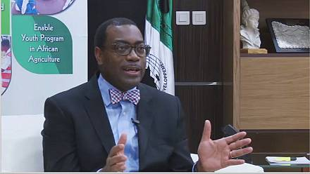 AfDB boss on Africa's economic outlook [Exclusive]