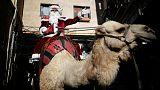 Jérusalem se prépare à Noël