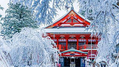 Japon : des milliers de passagers bloqués par la neige dans le nord