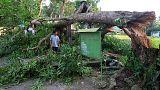 توفان در فیلیپین ۳ قربانی گرفت