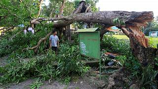 Typhoon Nock-ten roars through Philippines, killing four people