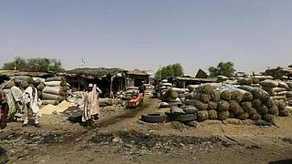 Suicide bomber attacks Nigeria's Maiduguri market