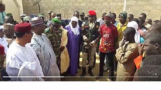 31 Boko Haram fighters surrender to Niger authorities