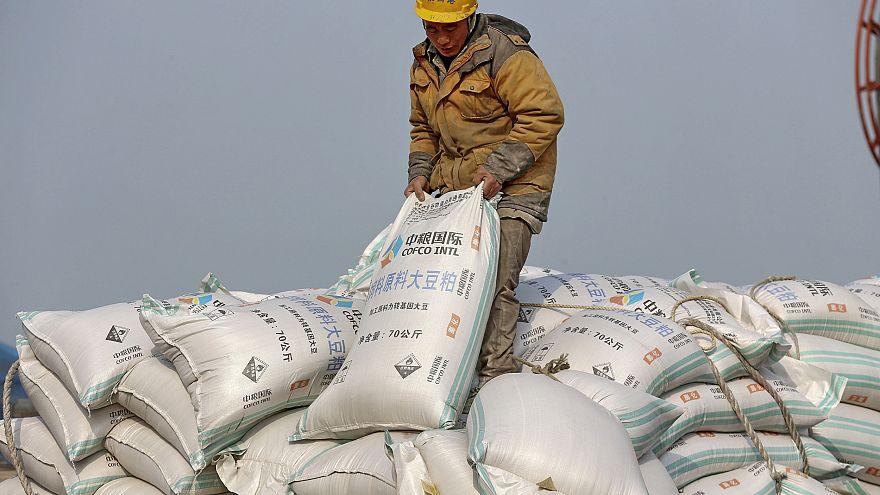 Image: China soybean import