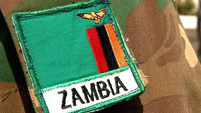 Zambian army to fight caterpillar invasion