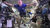 Um desafio de manequins espaciais
