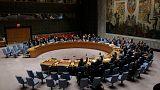 سوريا: مجلس الأمن الدولي يدعم الخطة الروسية-التركية